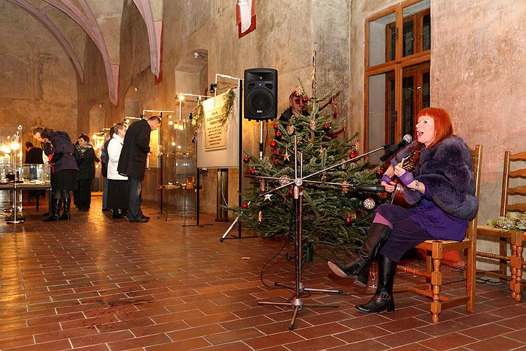 """Vernisáž výstavy """"Evropa - kolébka vědeckého porodnictví"""" v Táboře, 19. prosince 2008, foto: Lubor Mrázek"""