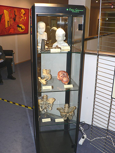 Vernisáž výstavy EVROPA, KOLÉBKA VĚDECKÉHO PORODNICTVÍ, 2.10.2007, budova Paul Henry Spaak, Evropský parlament v Bruselu